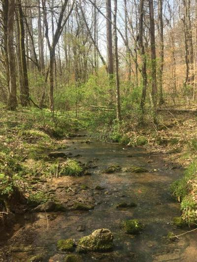 Loudon County Residential Lots & Land For Sale: 0 Ruritan Rd