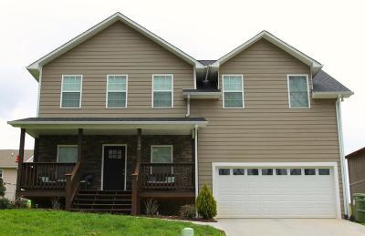 Sevierville Single Family Home For Sale: 1280 Lori Ellen Court