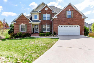 Knoxville Single Family Home For Sale: 1100 Winterberry Lane