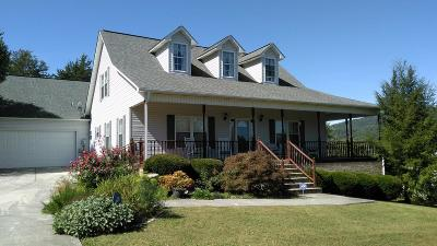 Cumberland Gap Single Family Home For Sale: 212 Courtney Circle