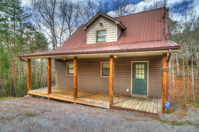 Pigeon Forge Single Family Home For Sale: 2912 Pine Haven Drive