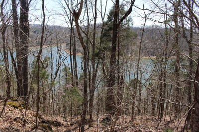 Speedwell Residential Lots & Land For Sale: Acre Flat Hollow Marina Rd