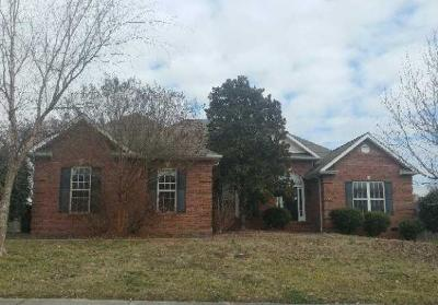 Alcoa Single Family Home For Sale: 1630 Linden Hall Drive