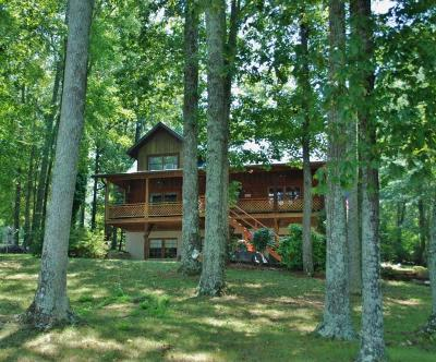 Meigs County, Rhea County, Roane County Single Family Home For Sale: 168 Henley Point