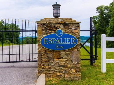 Meigs County, Rhea County, Roane County Residential Lots & Land For Sale: 61 Espalier Dr