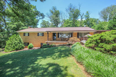 Greenback Single Family Home For Sale: 1038 Kirk Rd