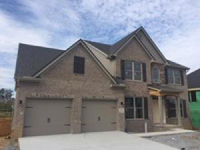 Maryville Single Family Home For Sale: 633 Branchwood Lane