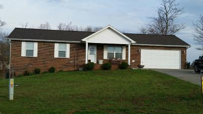 New Tazewell Single Family Home For Sale: 331 Altina Circle