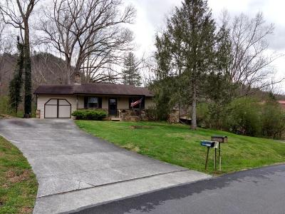 Single Family Home For Sale: 7710 Chestnut Hill Drive