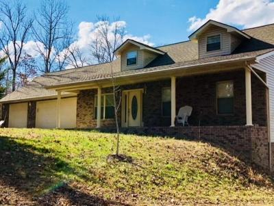 new tazewell Single Family Home For Sale: 246 Summer Breeze Lane