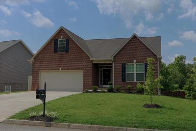 Lenoir City Single Family Home For Sale: 362 Garnet Hill Drive
