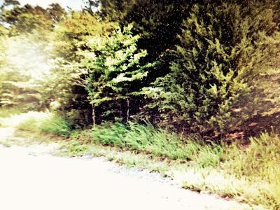 Lone Mountain Shores, Lone Mountain Shores 2, Lone Mountain Shores 3, Lone Mountain Shores 3a, Lone Mountain Shores 3b, Lone Mountain Shores 4, Lone Mountain Shores 4a, Lone Mountain Shores 5, Lone Mountain Shores 5b, Lone Mountain Shores 6a, Lone Mountain Shores 6b, Lone Mountain Shores 6d, Lone Mountain Shores 7b, Lone Mountain Shores 7d, Lone Mountain Shores 8, Lone Mountain Shores, Norris Lake Residential Lots & Land For Sale: Lot 187 Chimney Rock Rd
