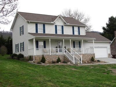 Jacksboro Single Family Home For Sale: 257 Springfield Drive