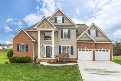 Strawberry Plains Single Family Home For Sale: 833 Commonwealth Ave