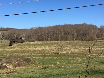 Rogersville Residential Lots & Land For Sale: 849 Carter Valley Rd