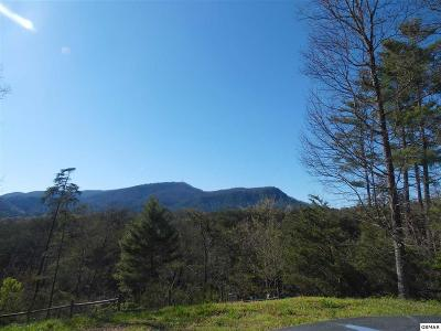 Pigeon Forge Residential Lots & Land For Sale: Lot 28r1 Jada Lane