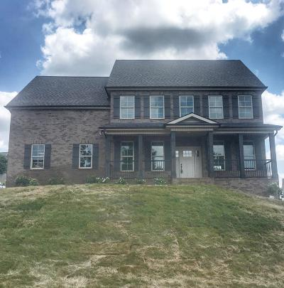 Knoxville Single Family Home For Sale: 9126 Candle Pine Drive