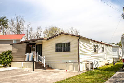 Townsend Single Family Home For Sale: 1003 Kildee St