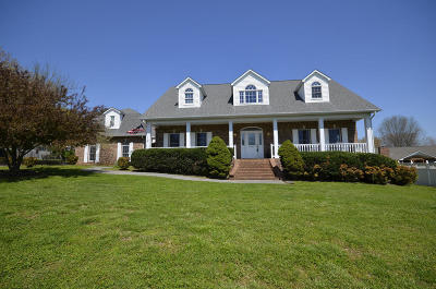 Sevierville Single Family Home For Sale: 865 Amy Lea