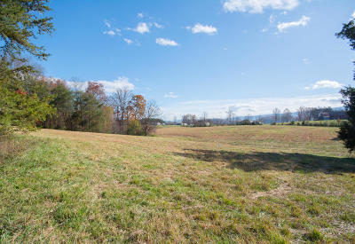 Maryville Residential Lots & Land For Sale: Sam James Rd