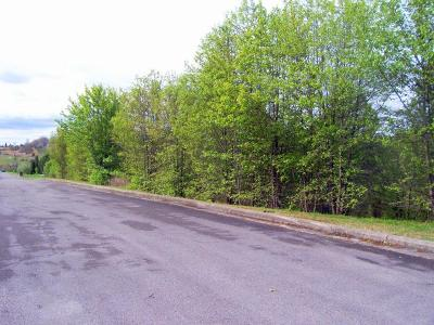 Monroe County Residential Lots & Land For Sale: Monroe St