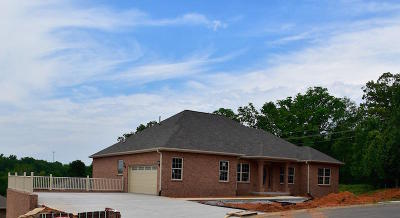 Sevierville Single Family Home For Sale: 1825 Placid Drive