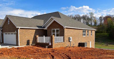 Sevierville Condo/Townhouse For Sale: 1921 Canyon Rd