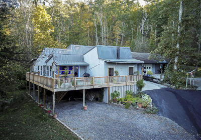 Sevierville Single Family Home For Sale: 1866 Windy Meadows Lane
