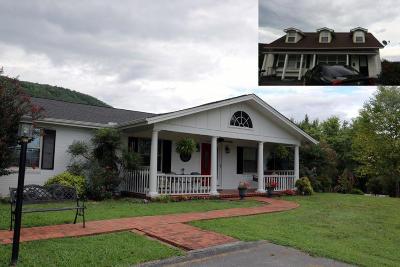 Jacksboro Single Family Home For Sale: 466 Butter & Egg Rd