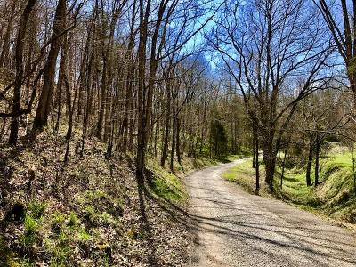 Tazewell Residential Lots & Land For Sale: Daniel Hollow Road