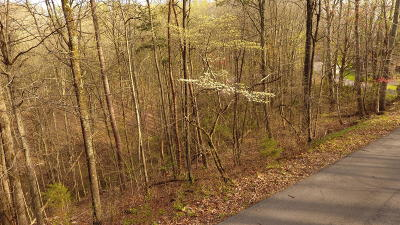 Seymour Residential Lots & Land For Sale: Smoky Mountain View Drive