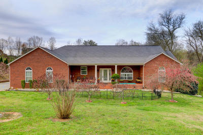 Sevierville Single Family Home For Sale: 1402 Alum Cave Cove