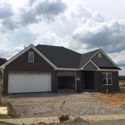 Maryville Single Family Home For Sale: 625 Branchwood Lane