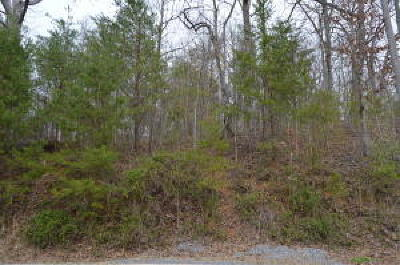 Seymour Residential Lots & Land For Sale: 902 Trinity View Circle
