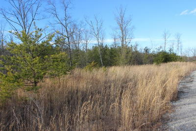 Residential Lots & Land For Sale: Mountain Laurel Lane