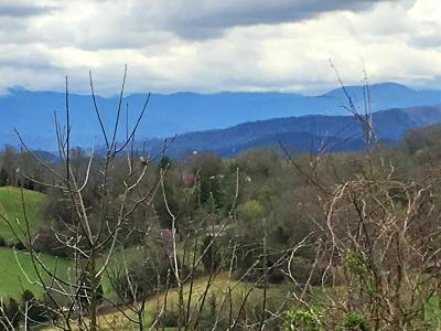 Sevier County Residential Lots & Land For Sale: Maggie Mack Lane