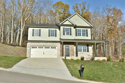 Knoxville Single Family Home For Sale: 3070 Oakwood Hills Lane
