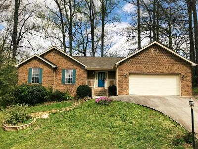 Maryville Single Family Home For Sale: 1008 Saint Johns Dr Drive
