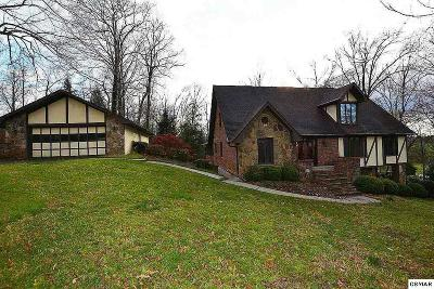 Sevierville Single Family Home For Sale: 1056 Topside Drive