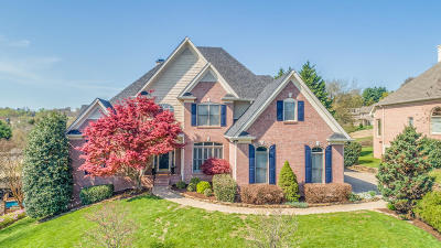Knoxville Single Family Home For Sale: 1015 Shadow Brook Drive