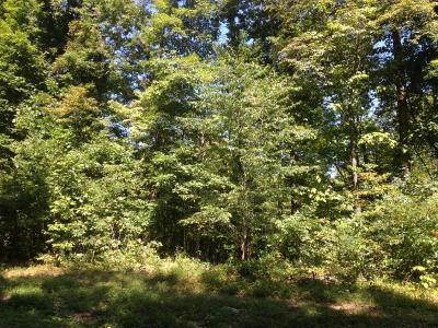Campbell County, Anderson County, Union County, Claiborne County, Grainger County Residential Lots & Land For Sale: Big Creek Lane