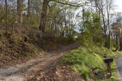 Anderson County Residential Lots & Land For Sale: 247 Carroll Hollow Rd
