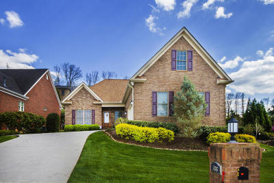 Lenoir City Single Family Home For Sale: 586 Timberline Drive