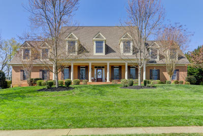 Knoxville Single Family Home For Sale: 12113 Mallard Bay Drive
