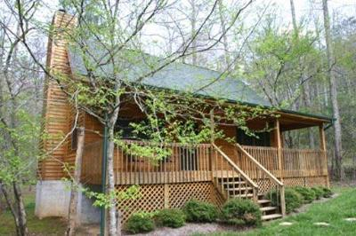 Townsend Single Family Home For Sale: 325 Laurel Rd
