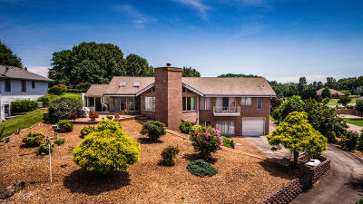 Friendsville Single Family Home For Sale: 659 Watershaw Drive