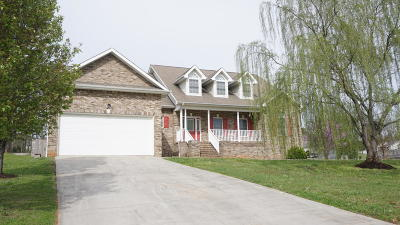 Sevierville Single Family Home For Sale: 1969 River Vista Circle