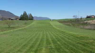 Campbell County Residential Lots & Land For Sale: Woodson Lane
