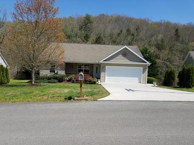 Oliver Springs Single Family Home For Sale: 109 Pleasant View Drive