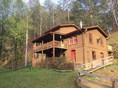Sevierville Single Family Home For Sale: 1425 Old Hag Hollow Way